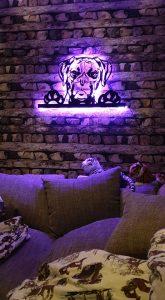 Boxer Hund 3 D Wandbild aus Holz mit LED Leuchte und Farbwechsler