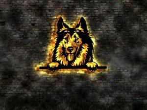Collie Hund 3D LED Leuchtschild aus Holz Schild Deko